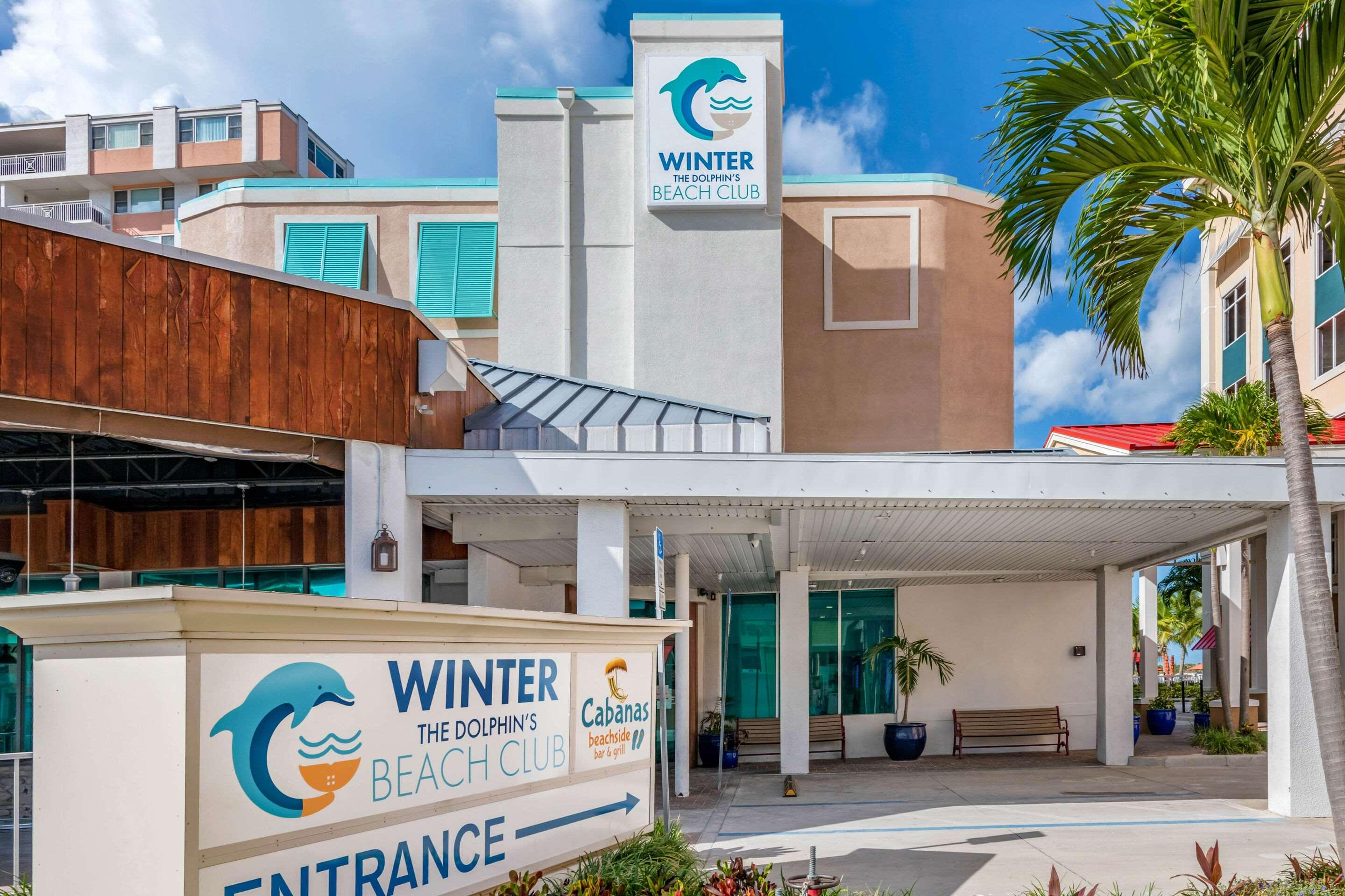 Winter the Dolphins Beach Club Ascend Hotel Collection